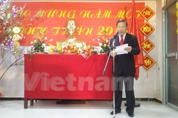 Comunidad vietnamita en Argelia y Alemania celebra el Tet hinh anh 1