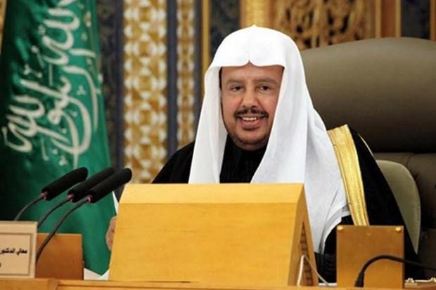 Presidente del Consejo Consecutivo del Reino de Arabia Saudita visita Vietnam hinh anh 1