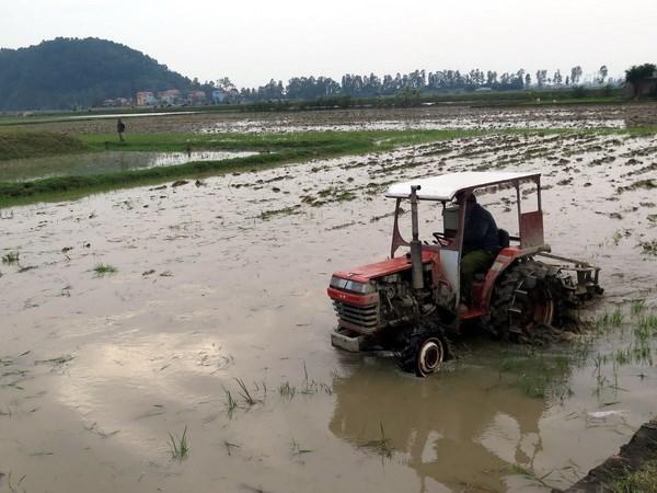 Programa gubernamental mejora vida de pobladores en mas de dos mil comunas hinh anh 1