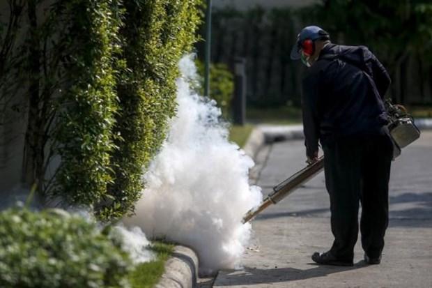 Tailandia tranquiliza a poblacion tras confirmacion del caso de Zika hinh anh 1