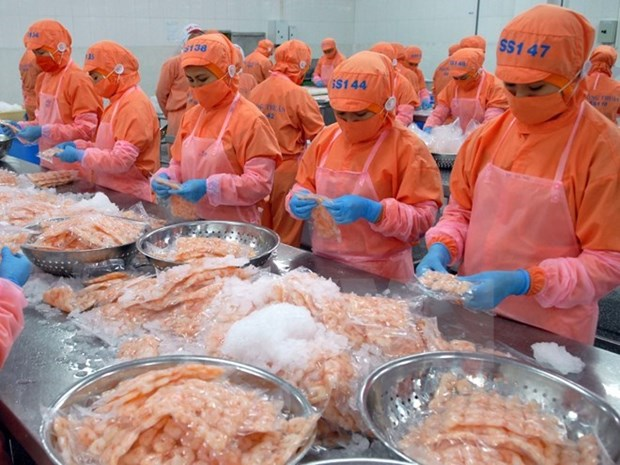Sector acuatico vietnamita se prepara ante la entrada en vigor del TPP hinh anh 1