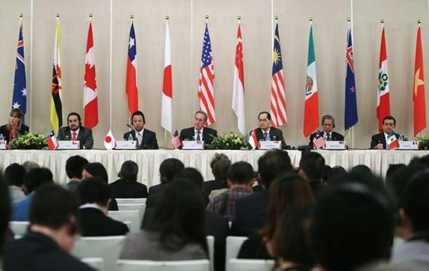 Firmado el Tratado de Asociacion Transpacifico (TPP) hinh anh 1