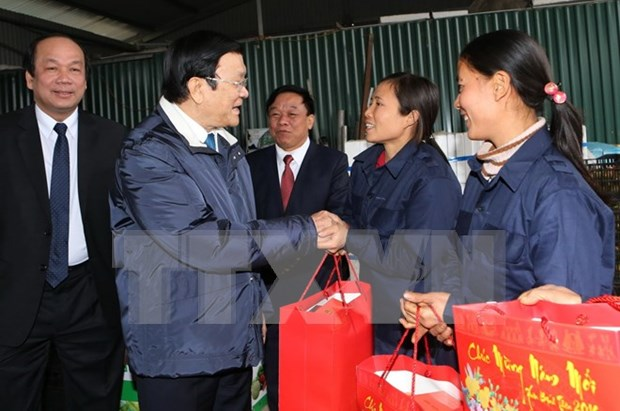 Visita presidente de Vietnam provincias nortenas en ocasion del Tet hinh anh 1