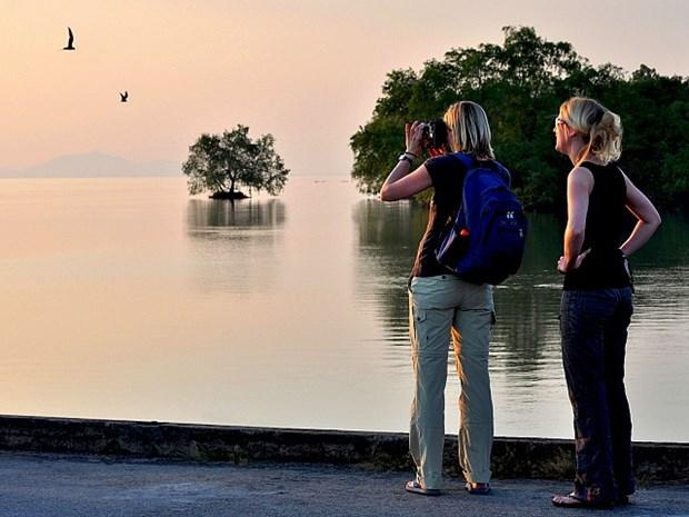 Aumentan turistas a la provincia vietnamita de Kien Giang hinh anh 1
