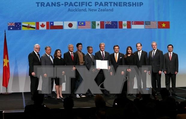 Vietnam y Mexico crean comite mixto para cooperacion economica hinh anh 1