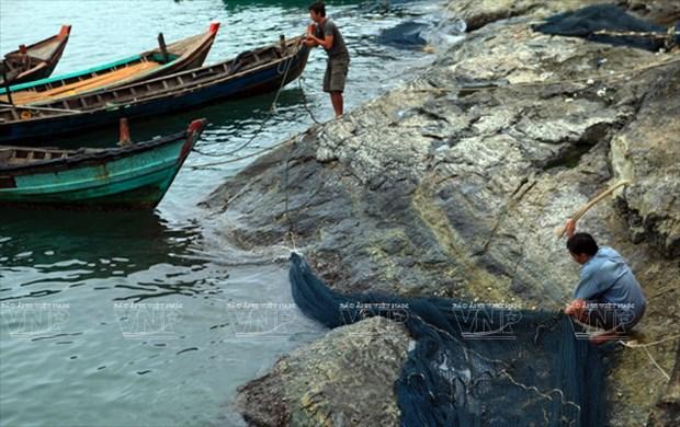 Cabo Ca Mau atrae a visitantes hinh anh 5