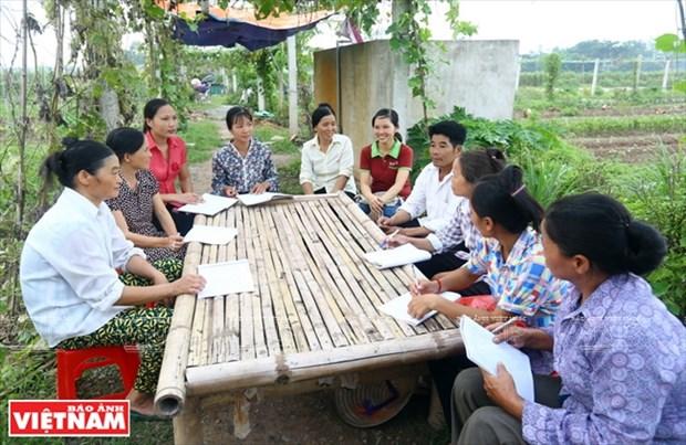 Organizacion belga ayuda a agricultores de Vietnam a superar pobreza hinh anh 1