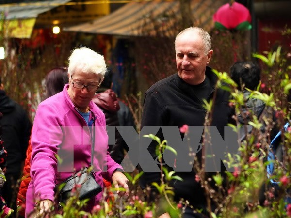 Interesados turistas extranjeros en el Tet hinh anh 1
