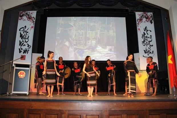 Comunidades vietnamitas en Australia celebran fiestas del Tet hinh anh 1