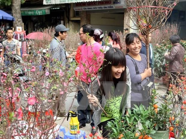 Los mercados de flores en Hanoi hinh anh 1