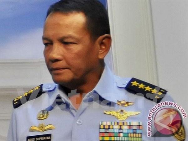 Cuatro muertos en accidente de avion militar en Indonesia hinh anh 1