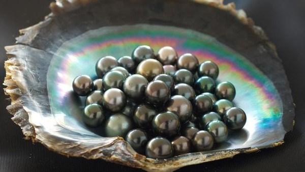 Empresa vietnamita aplica tecnologia en creacion de decoraciones en perlas hinh anh 1