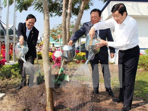 Presidente vietnamita llama a impulsar la plantacion de arboles hinh anh 1