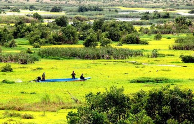 Parque Nacional U Minh Thuong, uno de los dos mil 228 sitios Ramsar del mundo hinh anh 1