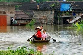 Holanda respalda enfrentamiento a cambio climatico en delta de Mekong hinh anh 1