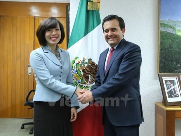Vietnam y Mexico estrechan colaboracion economica hinh anh 1
