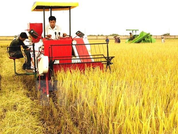 Japon busca oportunidades de inversiones en provincia vietnamita hinh anh 1