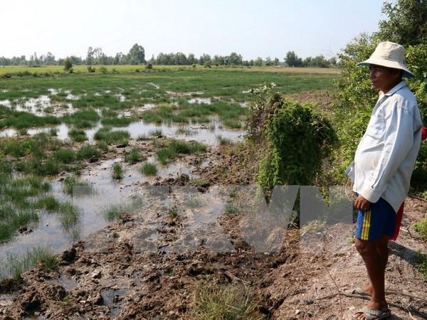 Presupuesto estatal respalda localidades afectadas por la sequia hinh anh 1