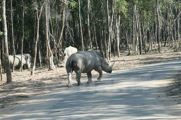 Desmienten informacion inexacta sobre parque zoologico de Vietnam hinh anh 1