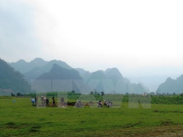 """Kong: Skull Island"" filma cuevas majestuosas de provincia Ninh Binh hinh anh 1"