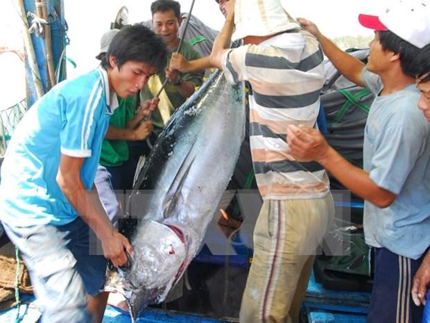 Incrementa Vietnam exportacion de productos agroforestales y acuaticos hinh anh 1