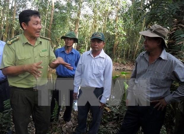 Tay Ninh corre el alto riesgo de incendios forestales hinh anh 1