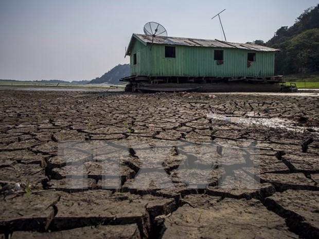 Vietnam y Holanda impulsan nexos de asociacion en lucha contra cambio climatico hinh anh 1