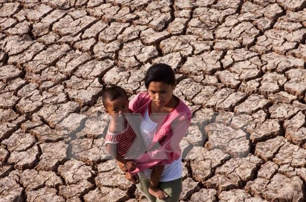 Vietnam aumenta conciencia ciudadana sobre lucha contra desastres naturales hinh anh 1