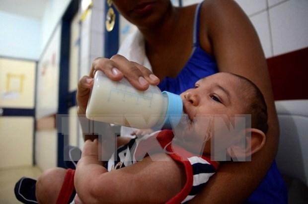 Recomiendan a turistas vietnamitas evitar 24 paises afectados por Zika hinh anh 1