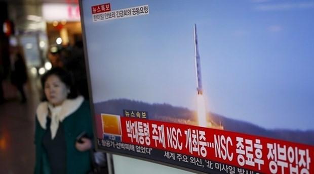 Vietnam exhorta soluciones pacificas para asuntos de Peninsula Coreana hinh anh 1