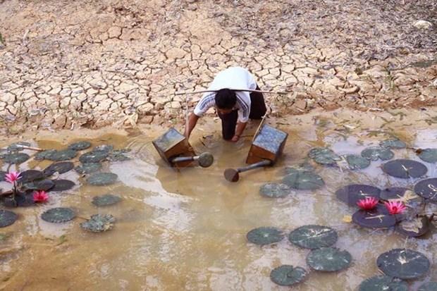 Obras hidroelectricas en Mekong causan perdidas de 231 millones de dolares hinh anh 1