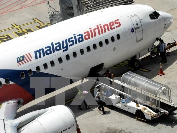 Familiares de victimas del MH370 demandan a la aerolinea y Malasia hinh anh 1