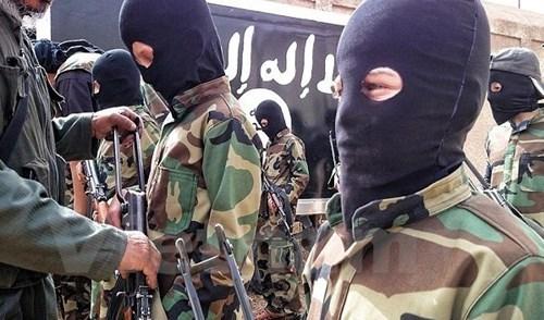 Malasia: casi 50 sujetos participan en actividades de Estado Islamico hinh anh 1