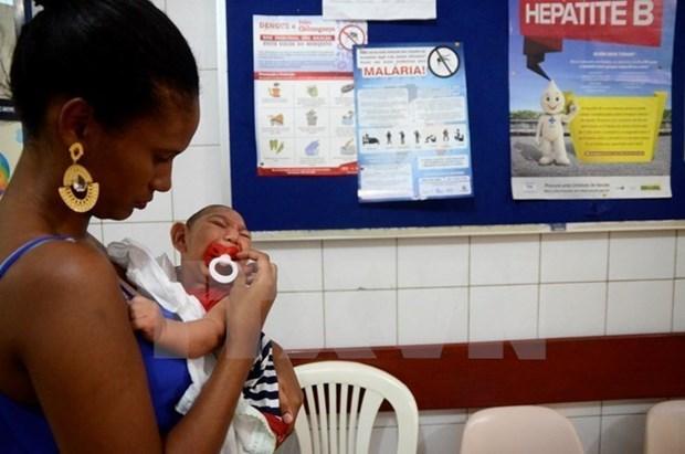Filipinas reporta primer caso del virus Zika desde 2012 hinh anh 1