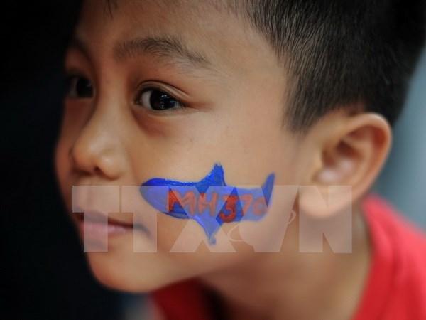 Familiares de victimas chinas del MH370 demandan a Malaysia Airlines hinh anh 1