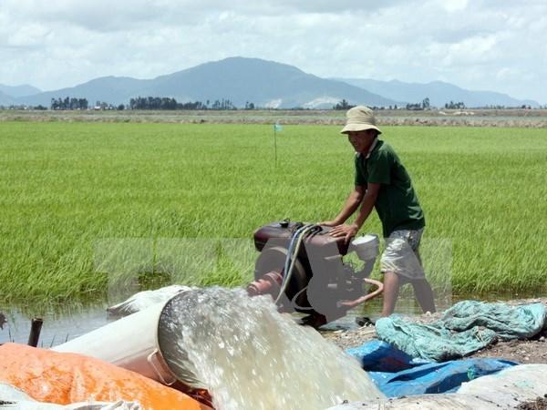 Sufre Tra Vinh escasez de agua por salinizacion y calor hinh anh 1