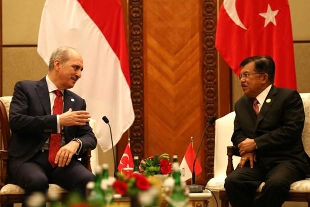 Indonesia y Turquia intensifican cooperacion contra el terrorismo hinh anh 1