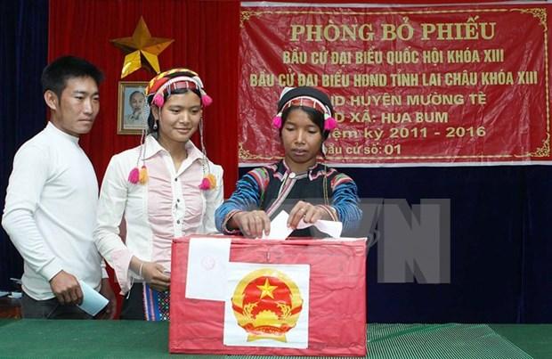 Elecciones parlamentarias vietnamitas: Aumenta numero de autocandidaturas hinh anh 1