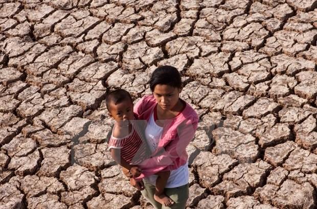 Seminario en Vietnam sobre riesgos de desastres naturales a personas vulnerables hinh anh 1