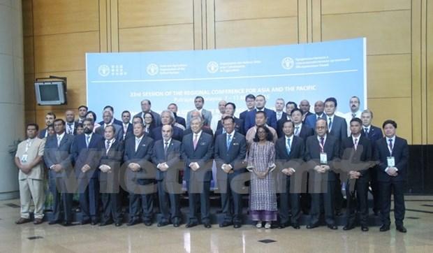 Reafirma Vietnam compromiso de coordinar con FAO en garantia de seguridad alimentari hinh anh 1