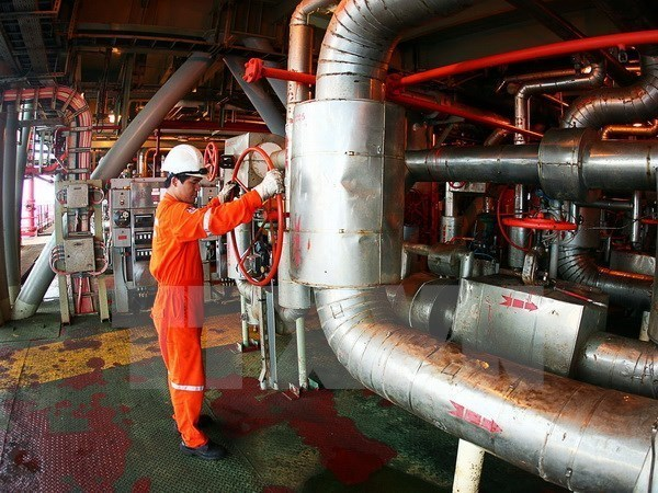 Rusia y Vietnam amplian cooperacion en explotacion petrolera hinh anh 1