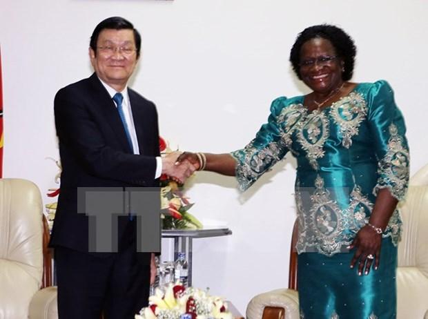 Amplia agenda de encuentros del presidente vietnamita en Mozambique hinh anh 1