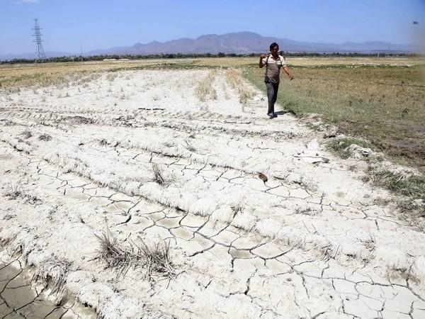 """Cambio climatico: Provincia vietnamita declara la situacion de """"catastrofica"""" hinh anh 1"""