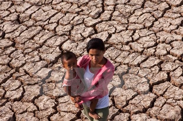 Otras diez provincias vietnamitas se declaran en situacion de catastrofica hinh anh 1