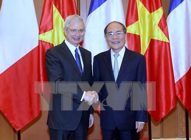 Vietnam y Francia refuerzan cooperacion parlamentaria y asociacion estrategica hinh anh 1