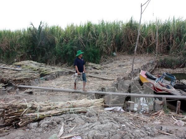 Comision Mixta de Mekong debate uso de recursos hidricos del rio hinh anh 1