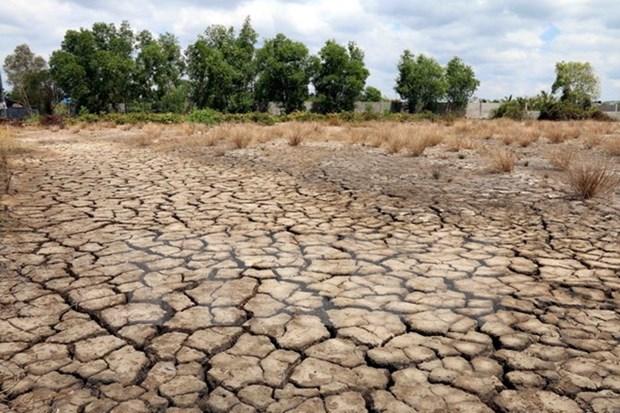 Impactos de El Nino se prolongaran hasta finales de junio hinh anh 1