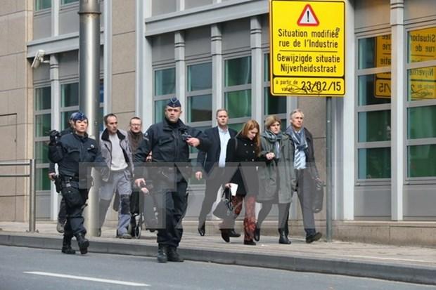 Ninguna victima vietnamita por explosiones en Bruselas hinh anh 1