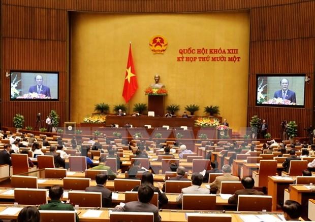Parlamento vietnamita revisara hoy proyecto legal a favor de infantes hinh anh 1