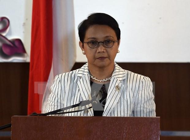 Indonesia y Holanda robustecen cooperacion economica hinh anh 1